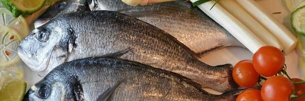 Quality fish suppliers for the home and restaurant industry 1 - About